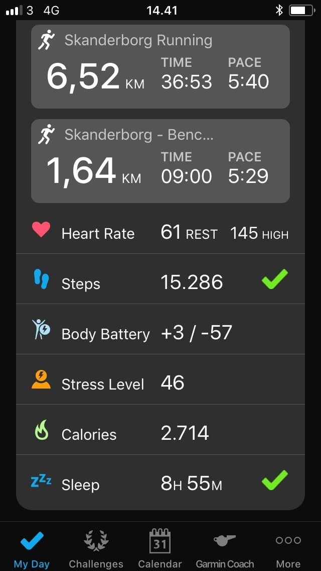 garmin connect overview