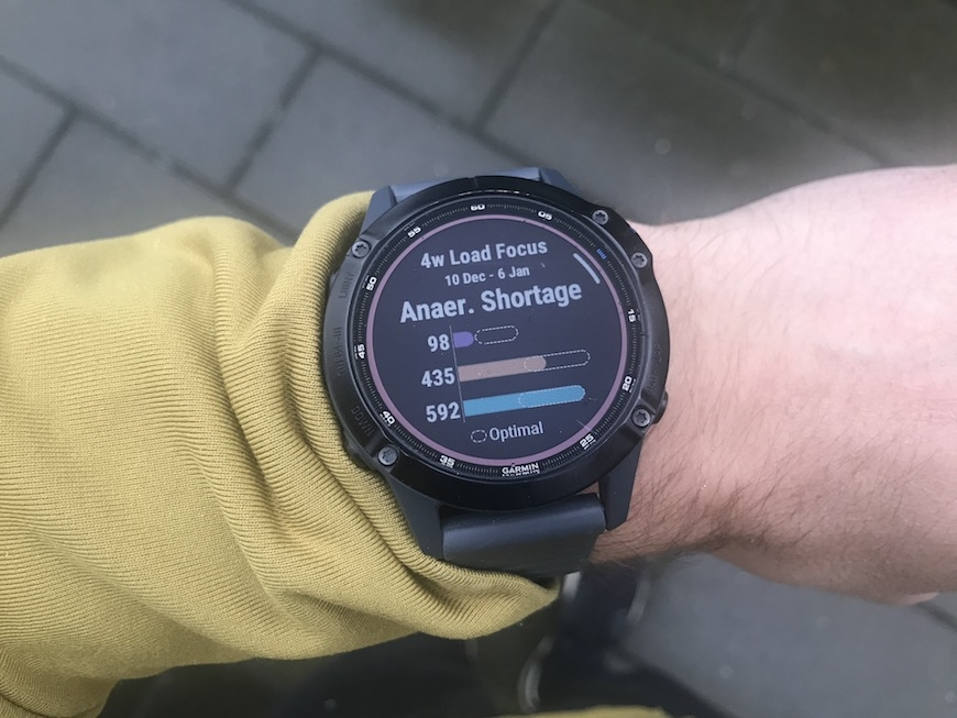 Garmin 4 week training load