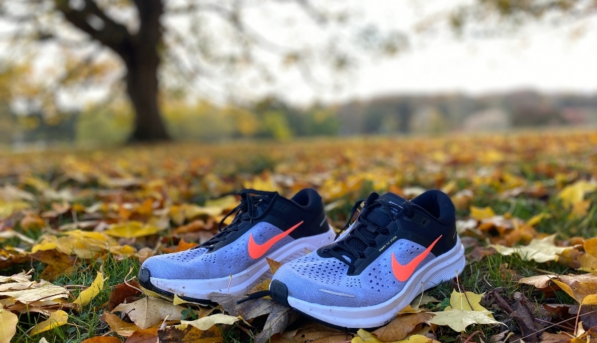Nike Zoom Structure 23